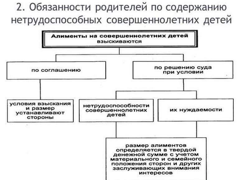 До скольки лет выплачиваются алименты на детей в России