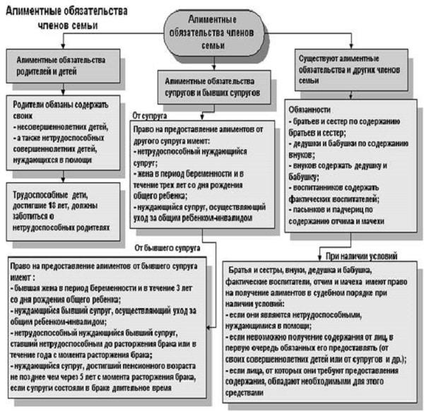 Понятие и виды алиментных обязательств